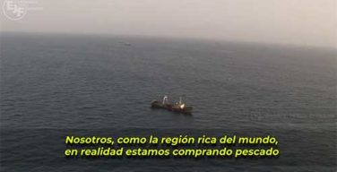 Terminar la pesca illegal