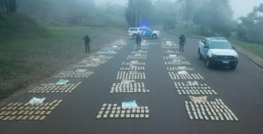 Argentina Captures Narcotraffickers, Seizes 9 Tons of Marijuana