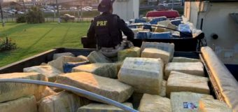 Brazil: Police Seizes More than 24 Tons of Marijuana from Paraguay