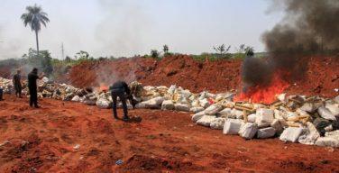 Paraguai incinera carregamento recorde com 36 toneladas de maconha