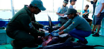 Ecuador Counters Illegal Fishing with Help from Canada, US