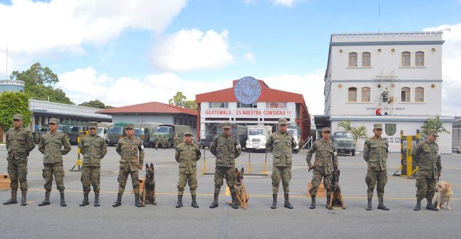 La Unidad Canina Militar de Guatemala se conformó hace 20 años, como parte de la Brigada de la Policía Militar de la Guardia de Honor. Cuenta con 16 perros que son entrenados constantemente para participar en operaciones militares como la detección de drogas, explosivos, ataque y búsqueda de personas. (Texto y foto: Jennyfer Hernández para Diálogo)